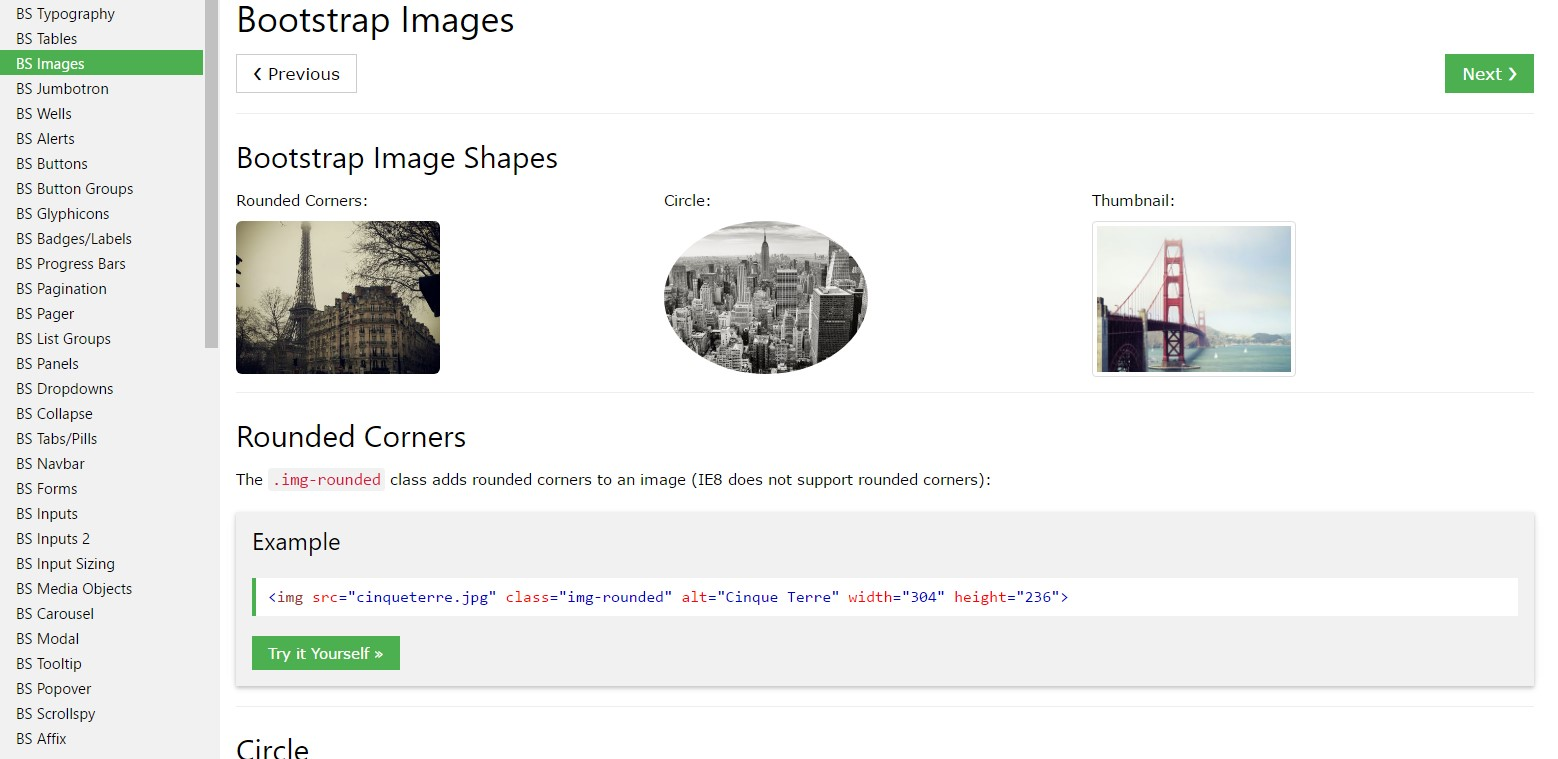 Bootstrap image  information