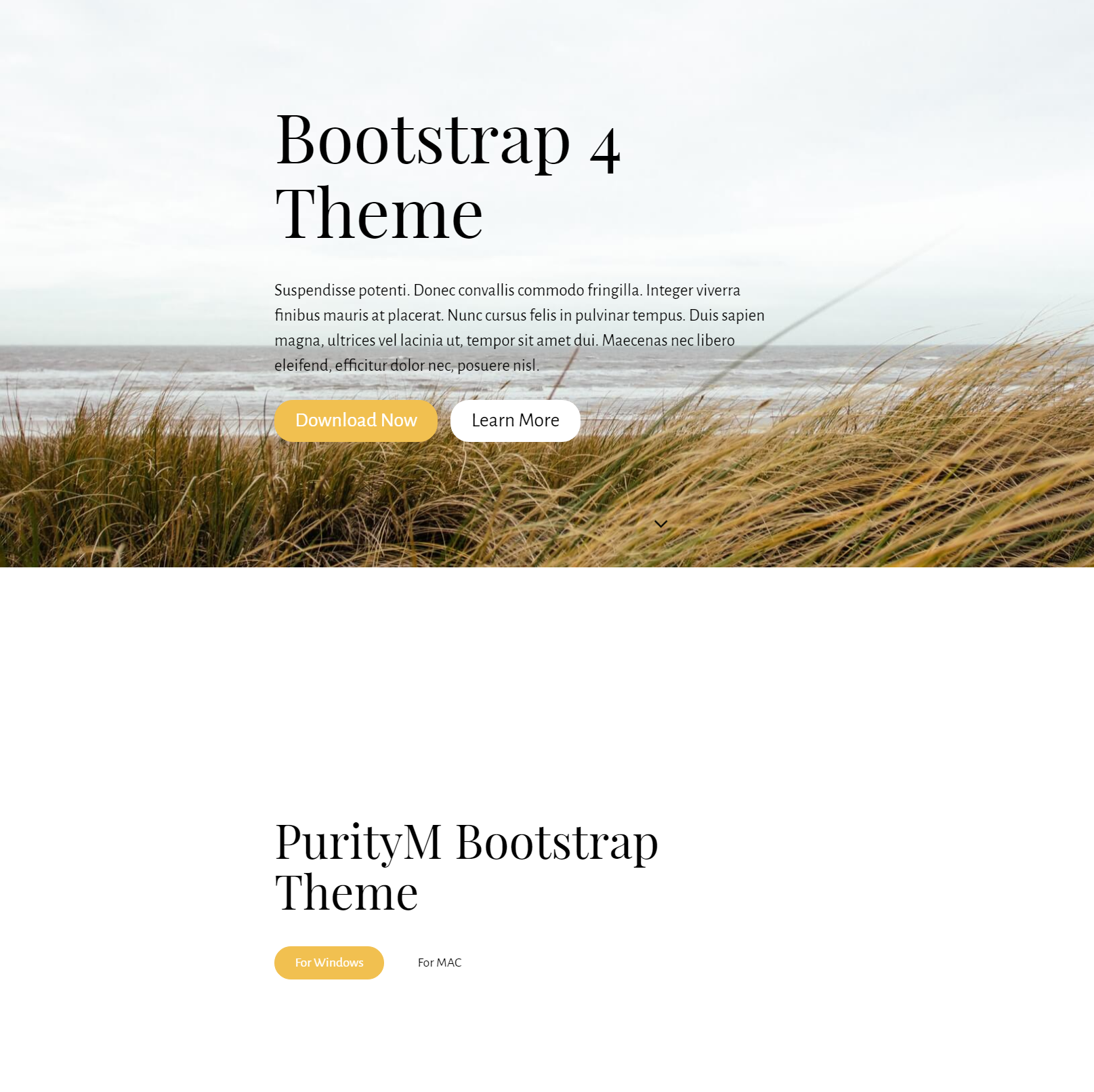 HTML Bootstrap 4 Templates