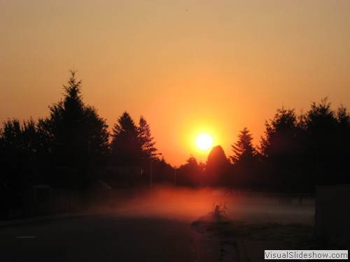 Amazing sunrise with the fog crawling across the roadway.